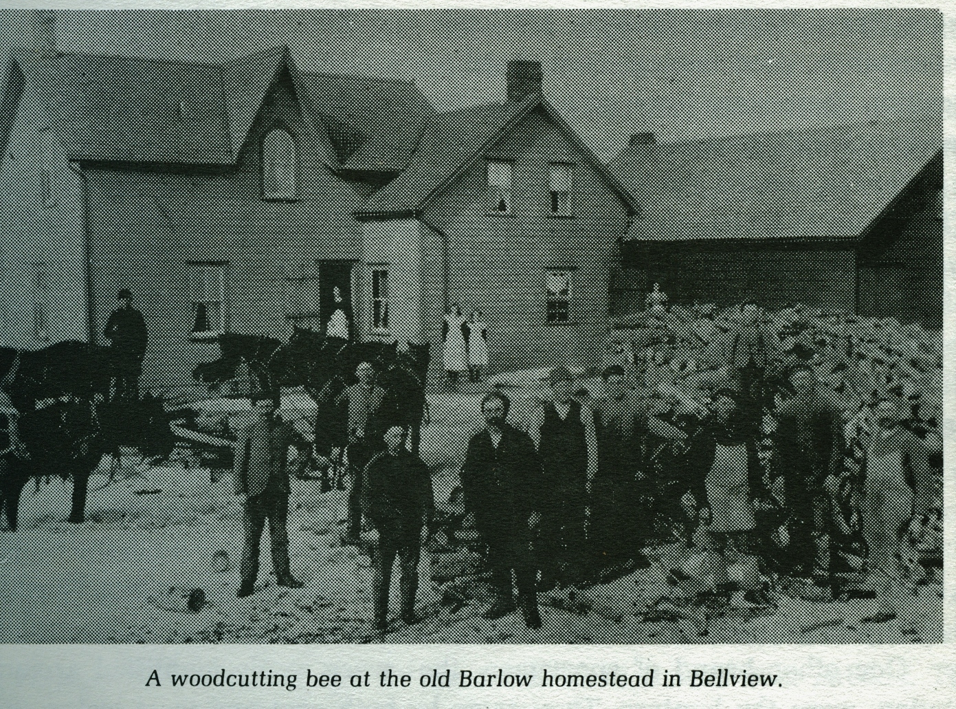 Barlow homestead, Bellview, Bonarlaw.jpg