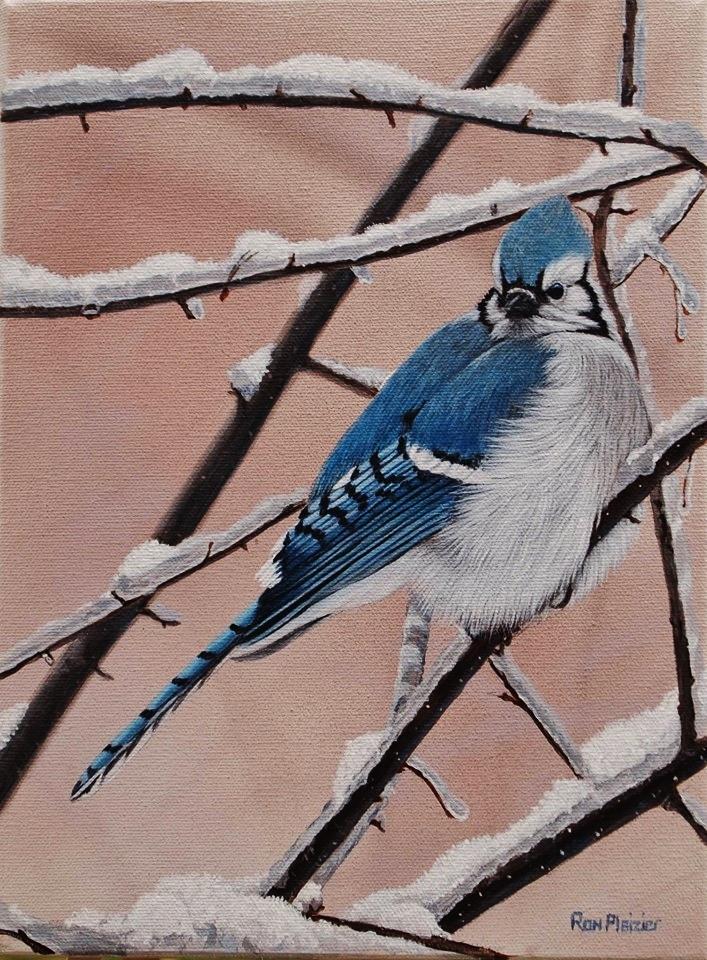 Ron Plazier Winter Blue.jpg