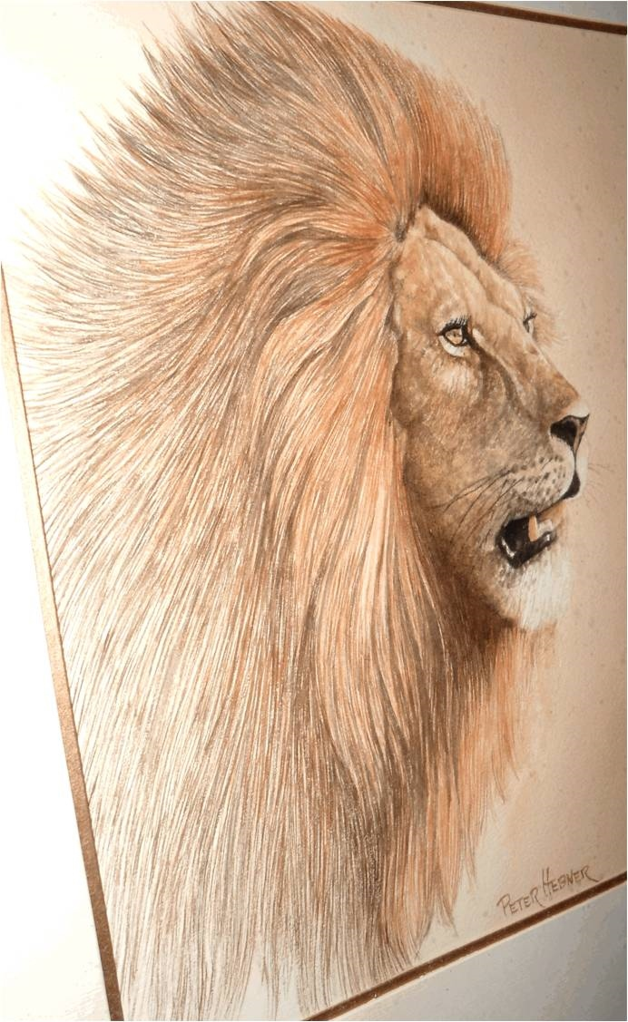 Hebner Lion jpg.jpg