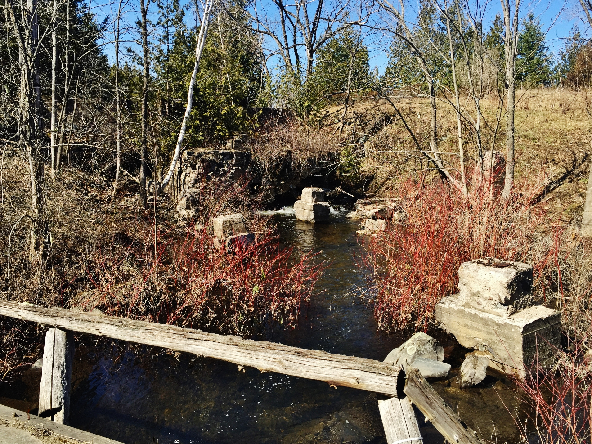 THE REMAINS OF THE briggs- BONTER SAW MILL - lOT 19 cONCESSION 5, mARMORA tOWNSHIP