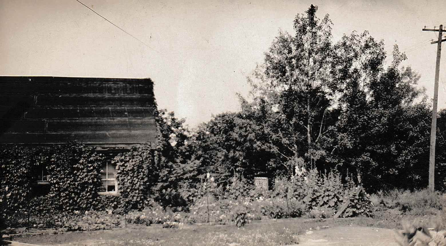 1920 early lab building, turned into a garden by Mr. Riggs