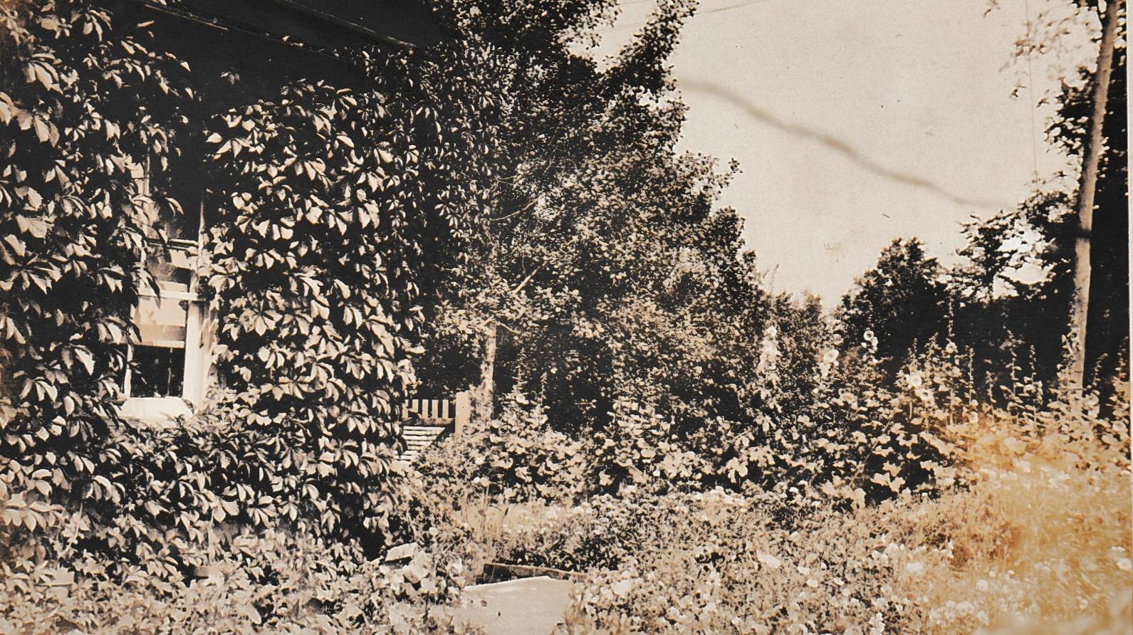 Mr. Riggs Garden  1920