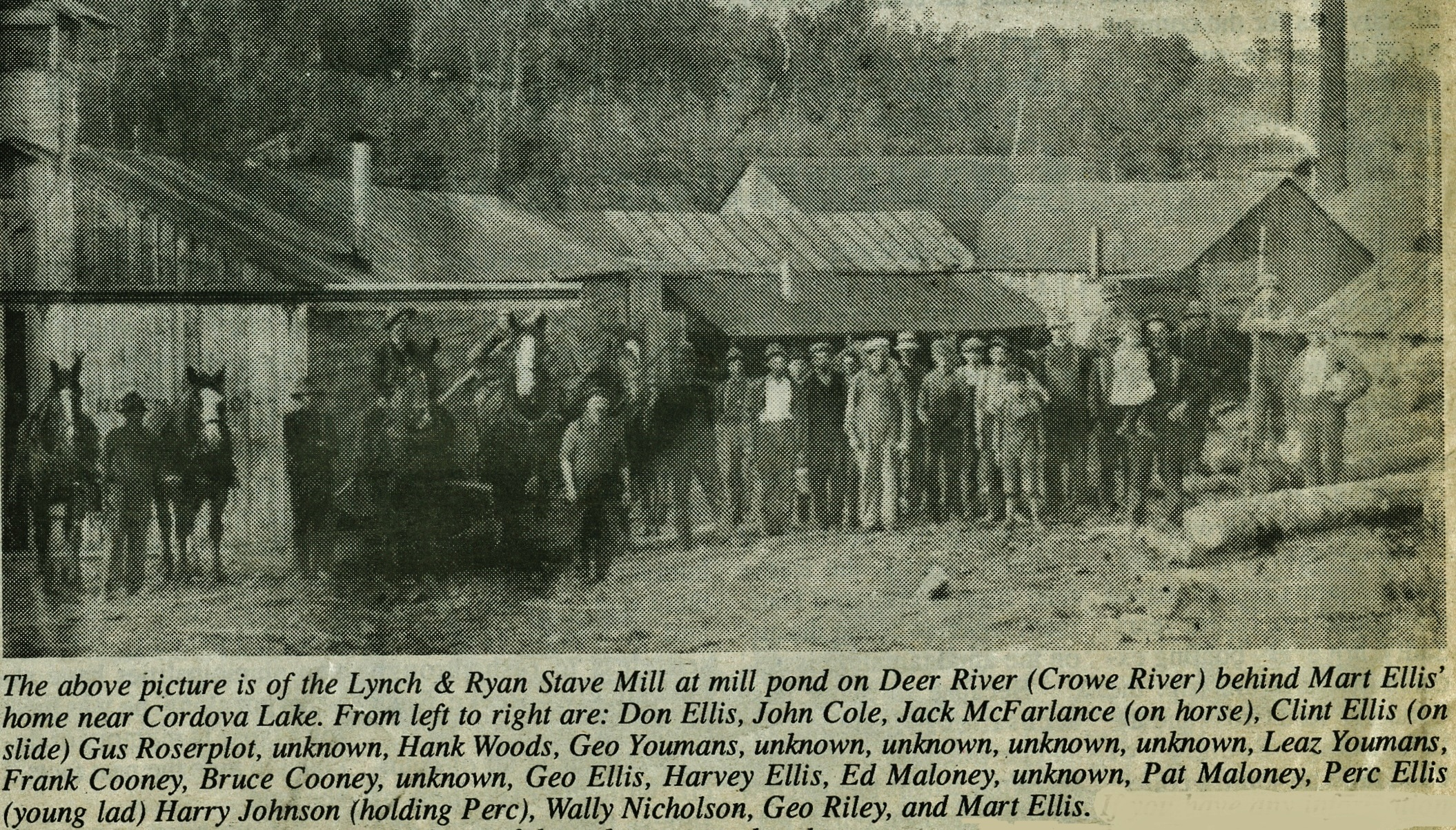Lynch and Ryan Stave Mill - Lumber.jpg