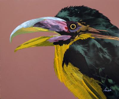 Bird-14-sm.jpg