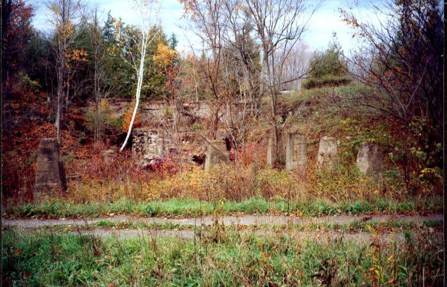 Ruins of the Briggs-Bonter saw mill