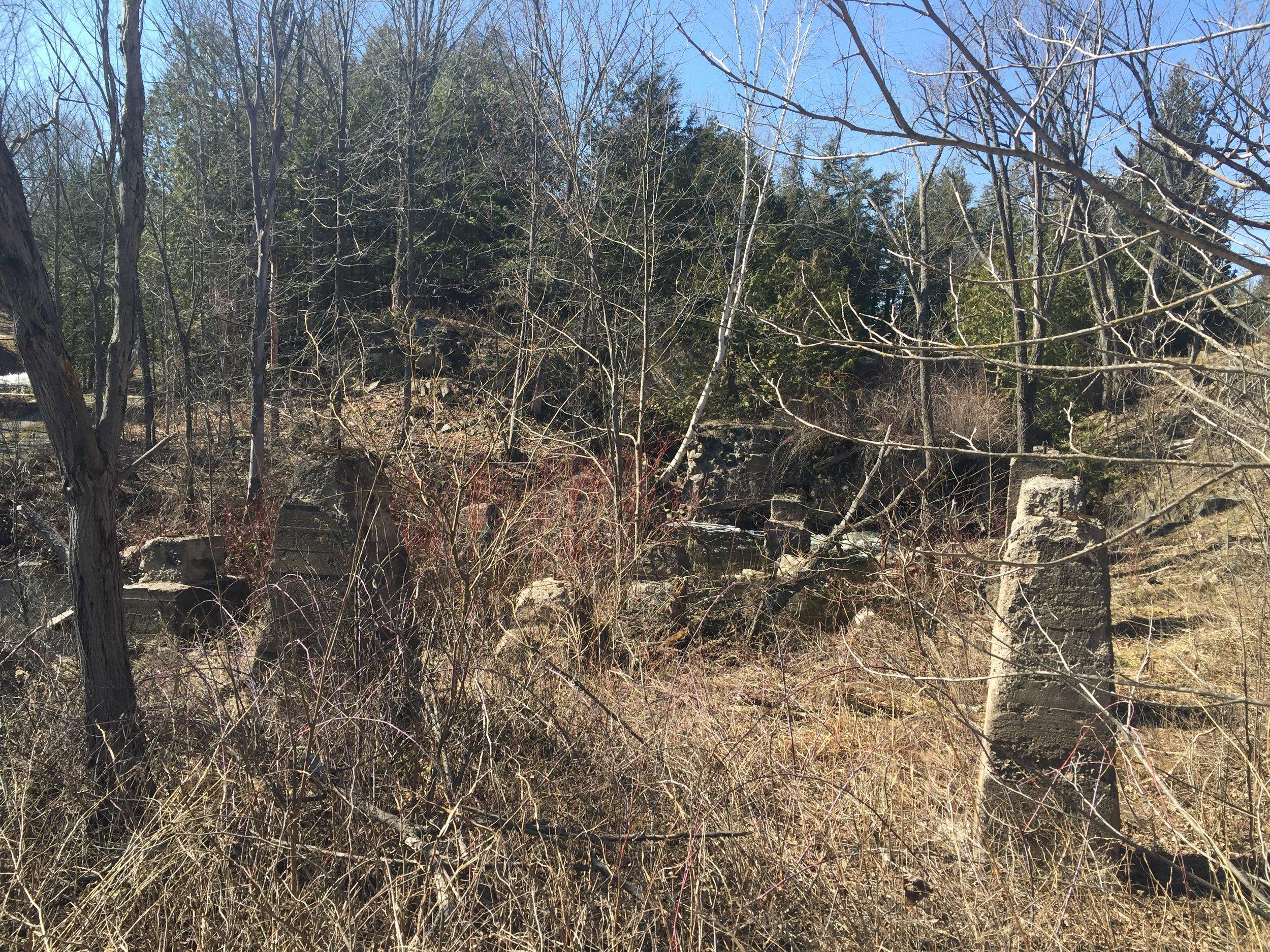 Bonter Saw Mill Lot 19 Conc. 5 (6).JPG