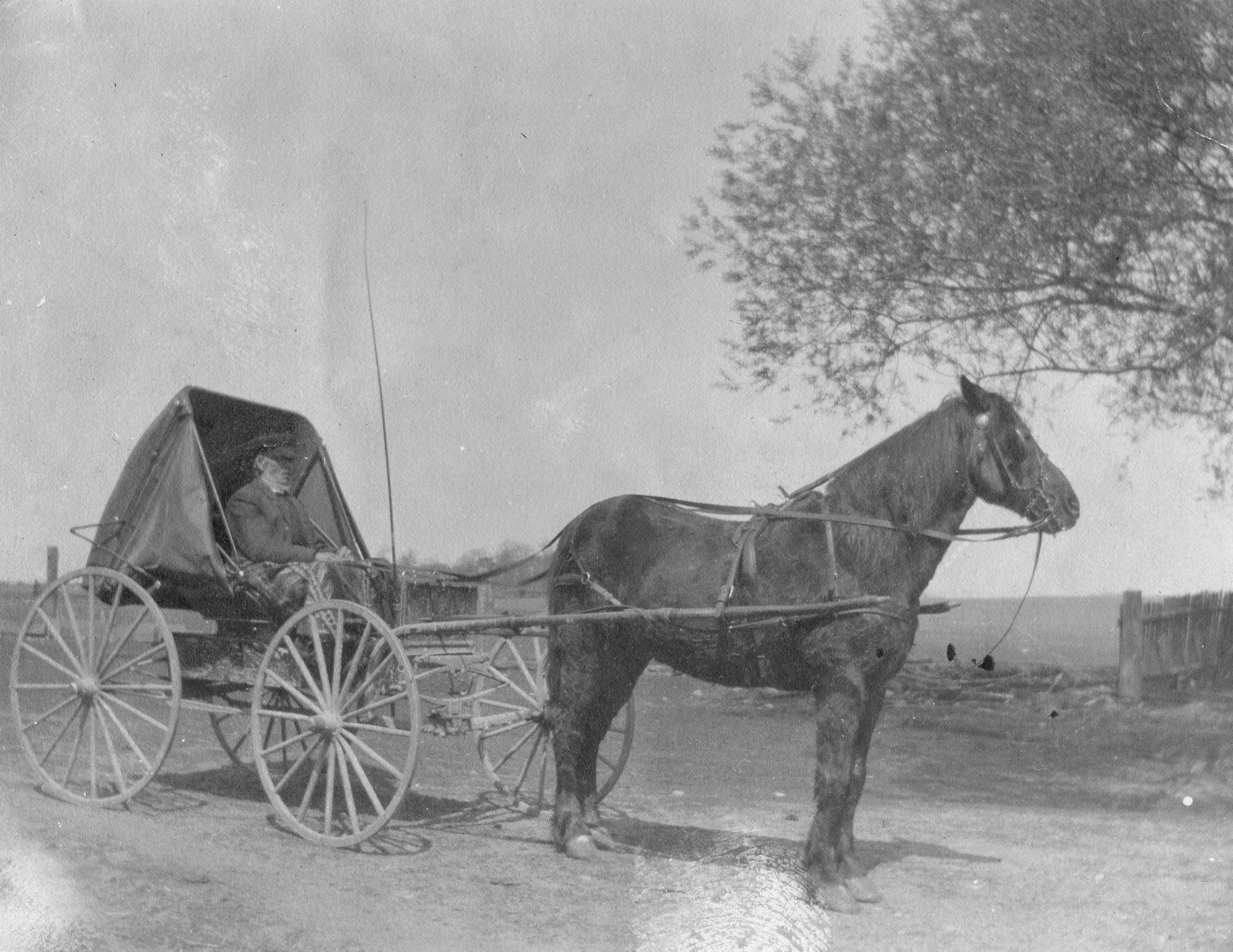 Early transportation (4).jpg