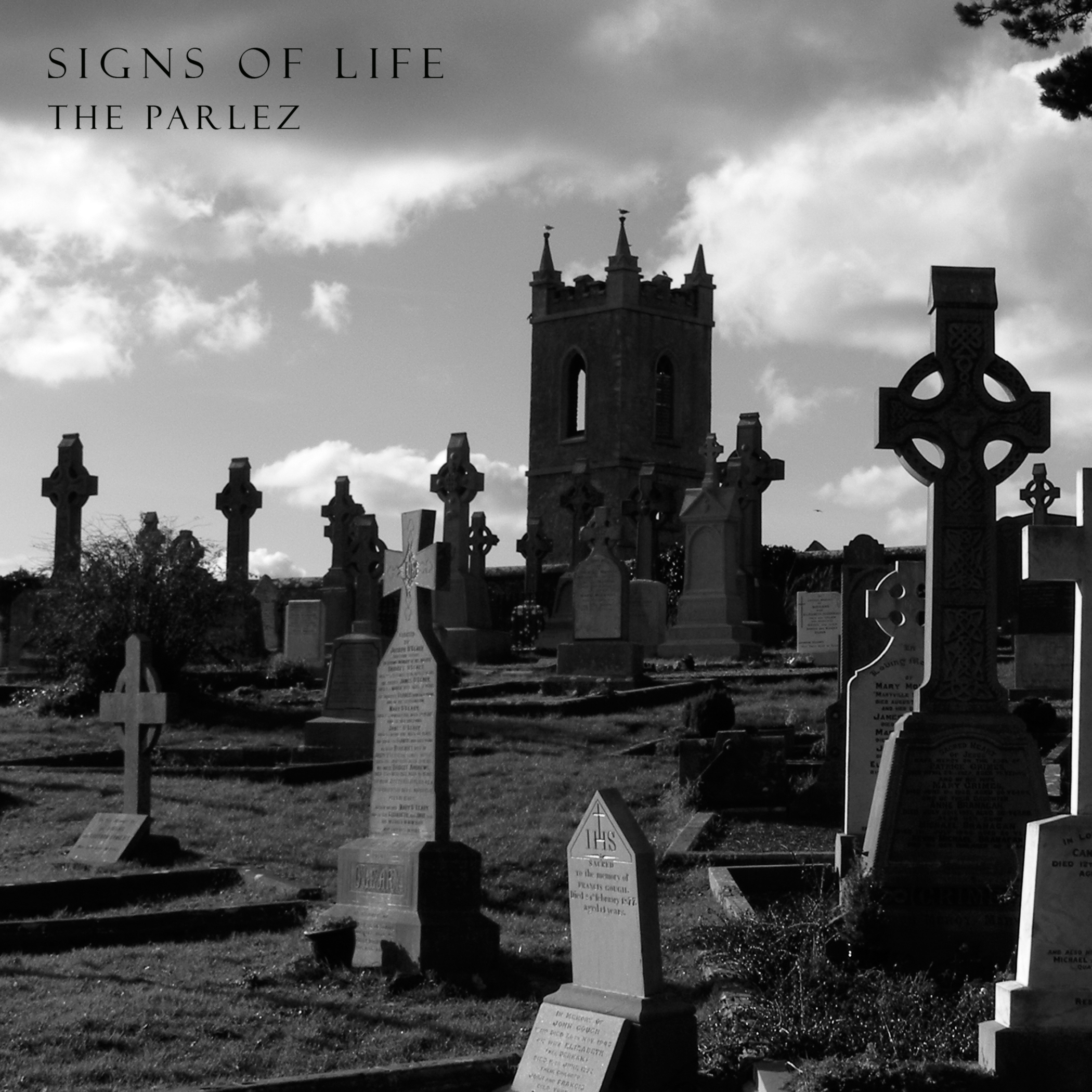 Signs Of Life-1.jpg