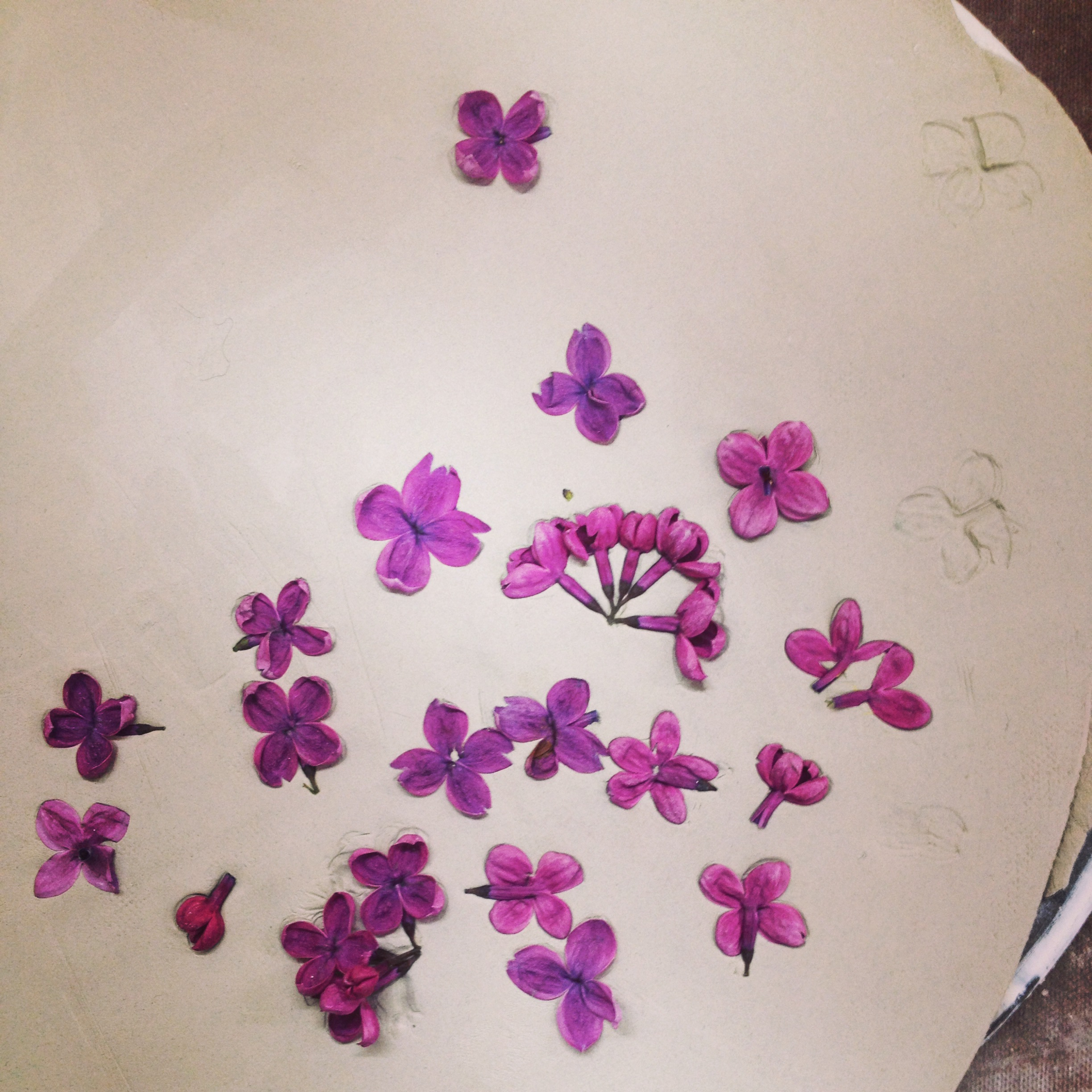Rolling lilacs into clay.