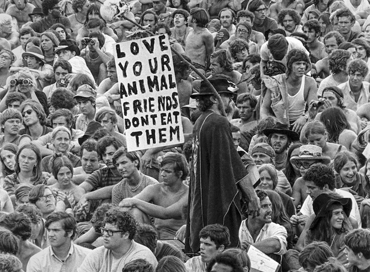 A man holds a pro-vegetarian poster amongst the crowd, Woodstock Festival, 1969 © Baron Wolman