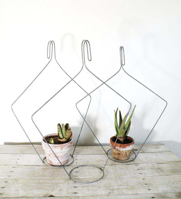 P  lant hangers from hangers.