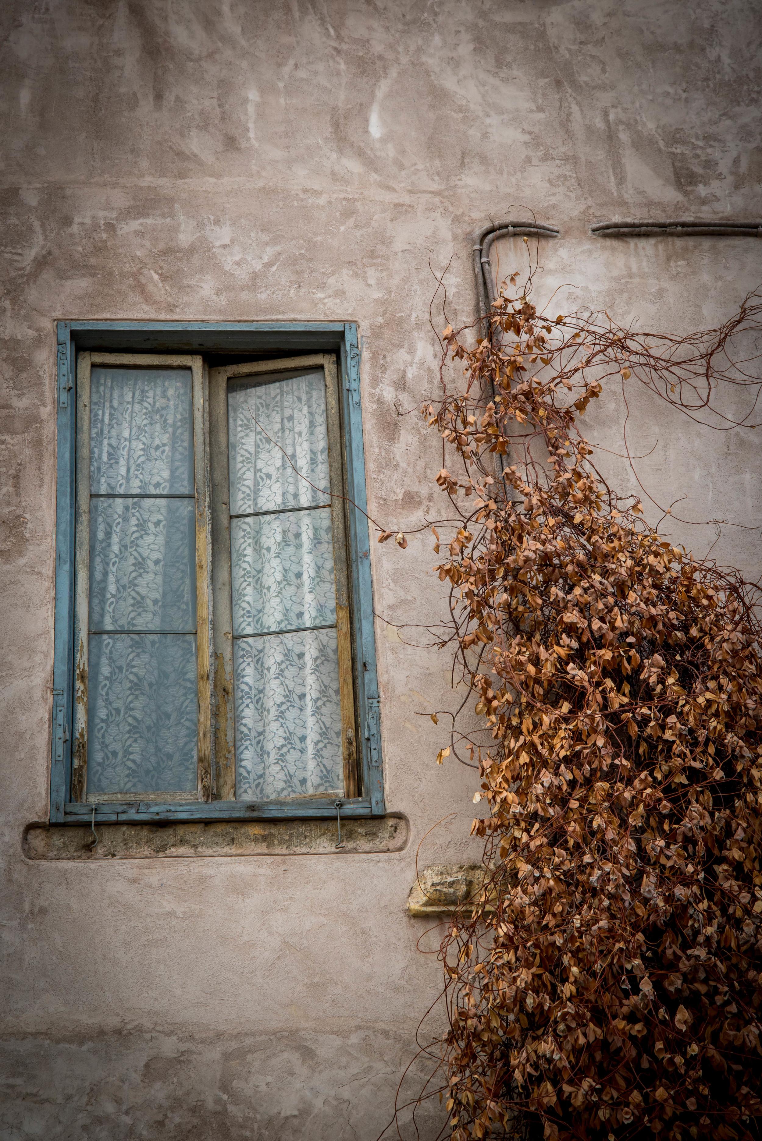 Window in Rome