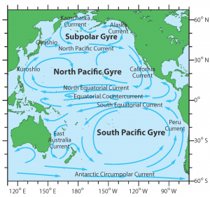 The North Pacific Gyre is a system of 4 oceanic currents: the Kuroshio Current, the North Pacific Current, the California Current, and the North Equatorial Current.