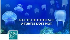 Plastic bags floating in the ocean may resemble jellyfish, a common prey item for leatherback sea turtles. To help solve this problem, opt for reusable bags when you shop.