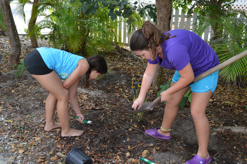 Our summer campers helped create a gopher tortoise garden during Sea Turtle Week last year - we love to protect creatures from the land and sea!