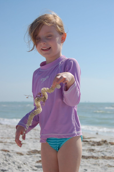 Maybe you've made this face aftercomingacross these long snake-like strings on the beach!