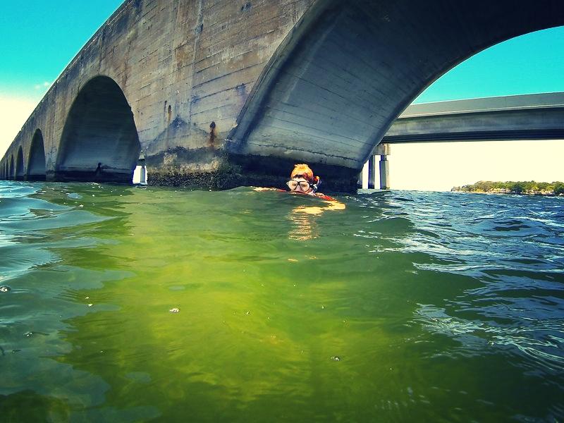 Snorkeling for treasure under the bridge at Big Pine Key.