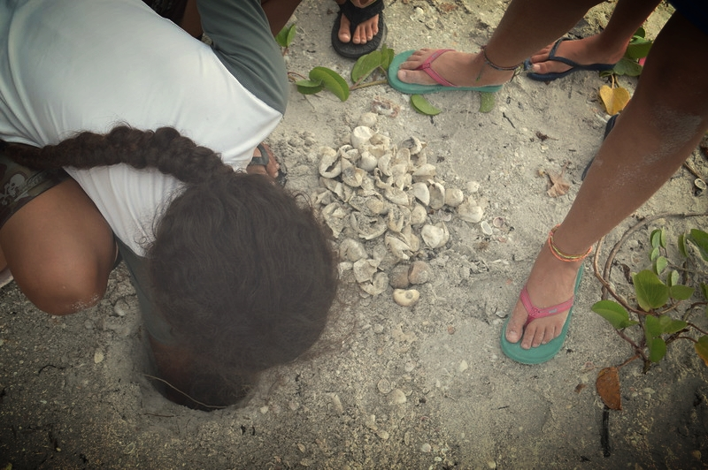 Niko Palanzi is amazed by the depth of the sea turtle nest.