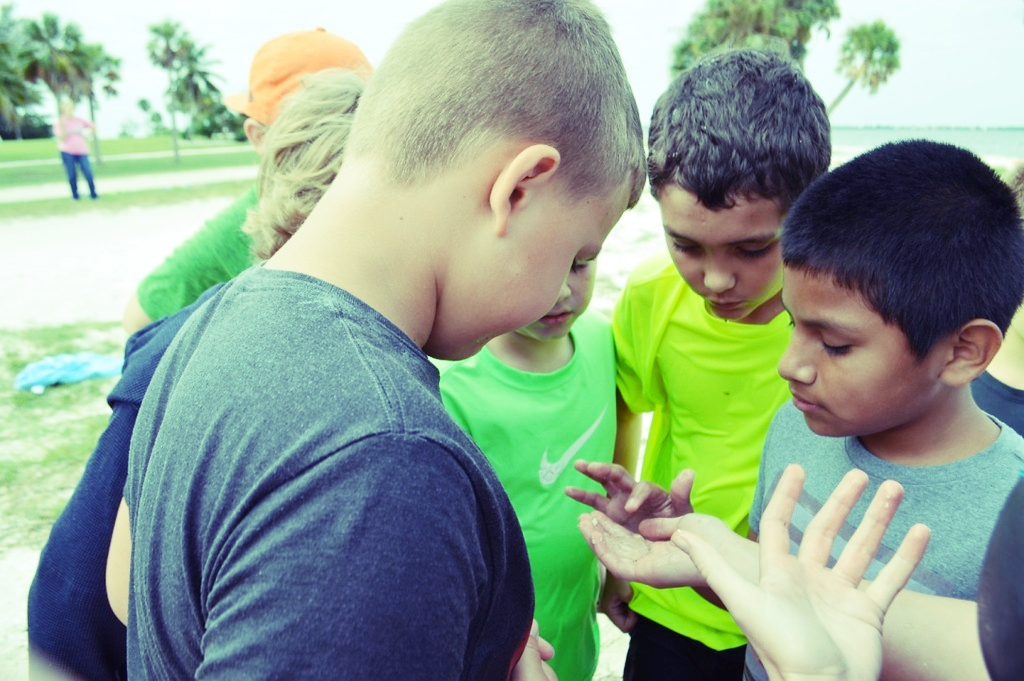 Students from LaBelle examine a comb jelly on the Causeway Islands.