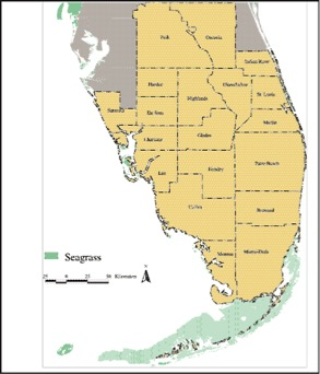 The distribution of seagrass in Florida.