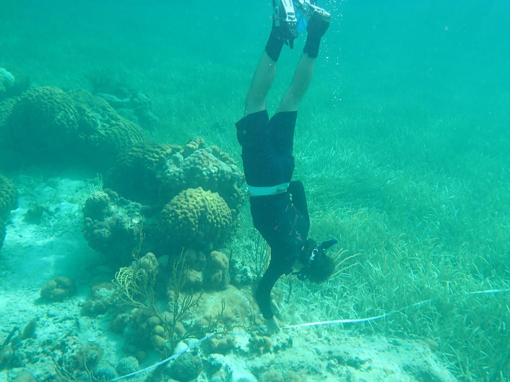 A Sanibel Sea School camper monitors seagrass health near Andros Island in the Bahamas.