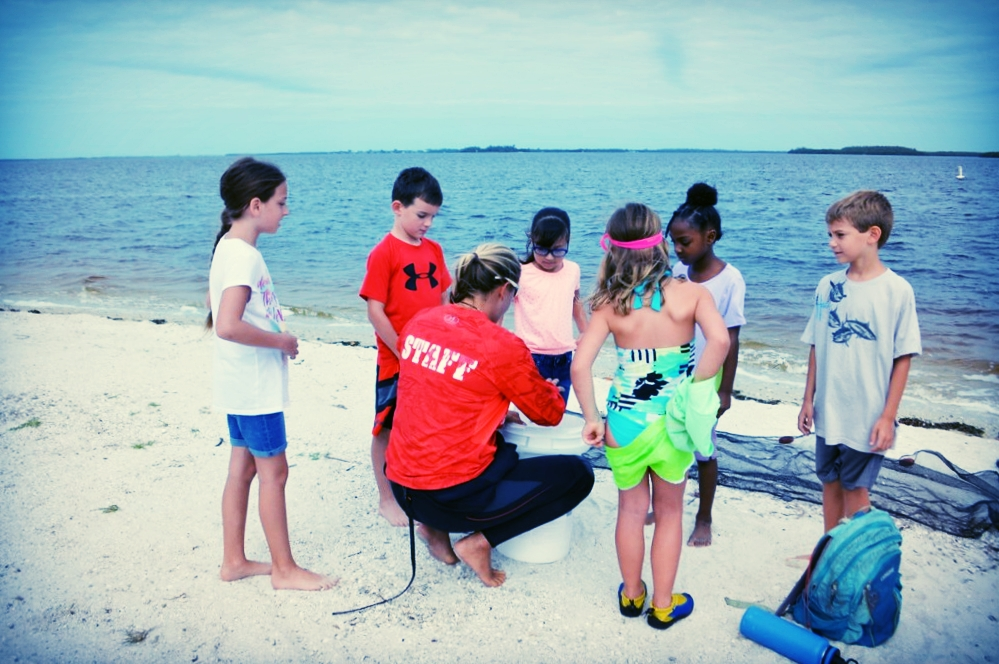 Hendry County students from Ms. Akin's class visit the Sanibel Causeway to learn about seagrass ecosystems.