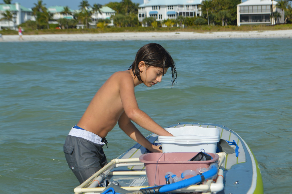 Aiden Bolado observes sand dollars in a bucket before releasing them into the Gulf.