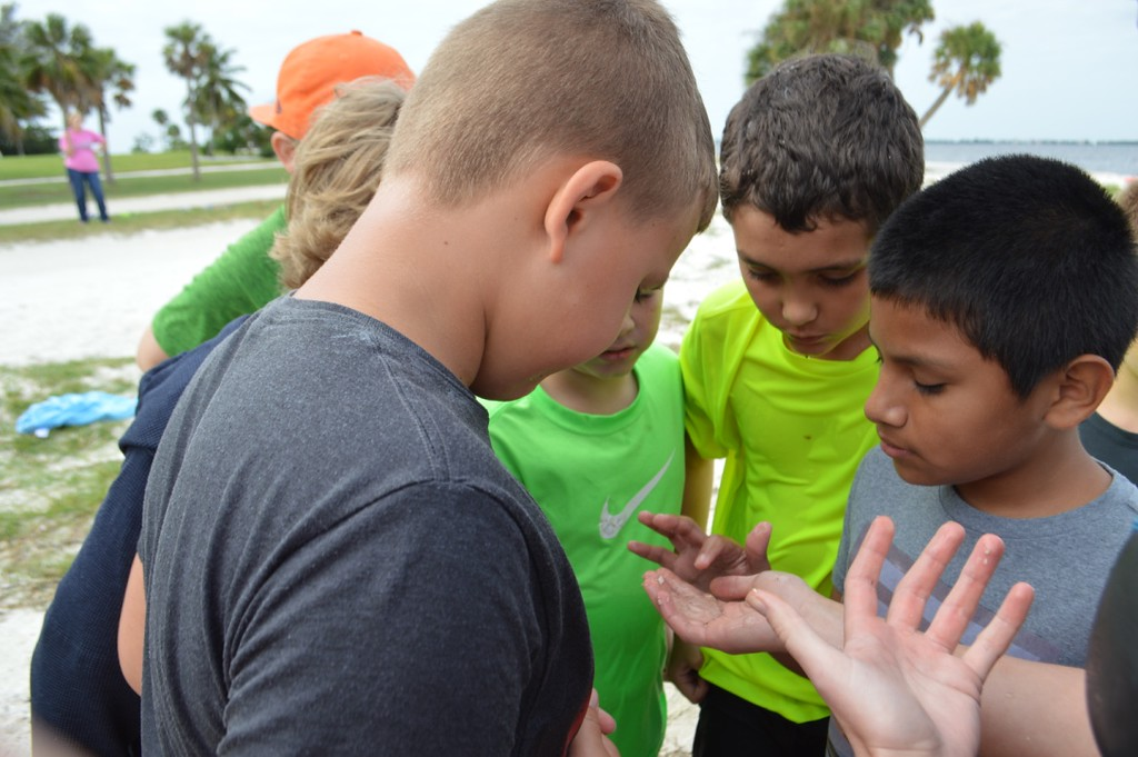Henry County students from Mrs. Akin's class examine a jellyfish during a field trip to the Causeways Islands.