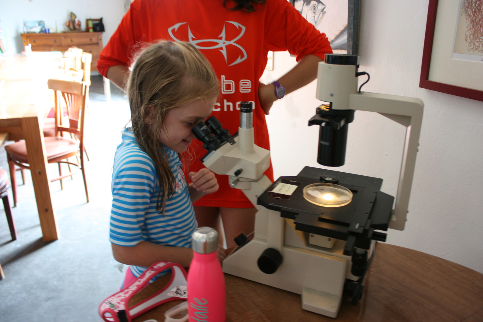Pipefish Week campers examined plankton (a favorite food of the pipefish) under a microscope.