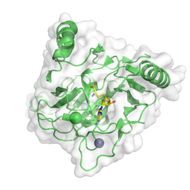 Protein methyltransferase NSD1 (pdbid 4h12)