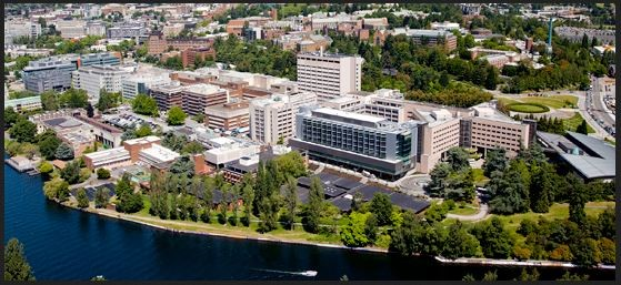 UW Department of Comparative Medicine