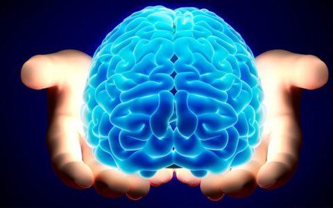 mind-over-matter-11-480x300.jpg