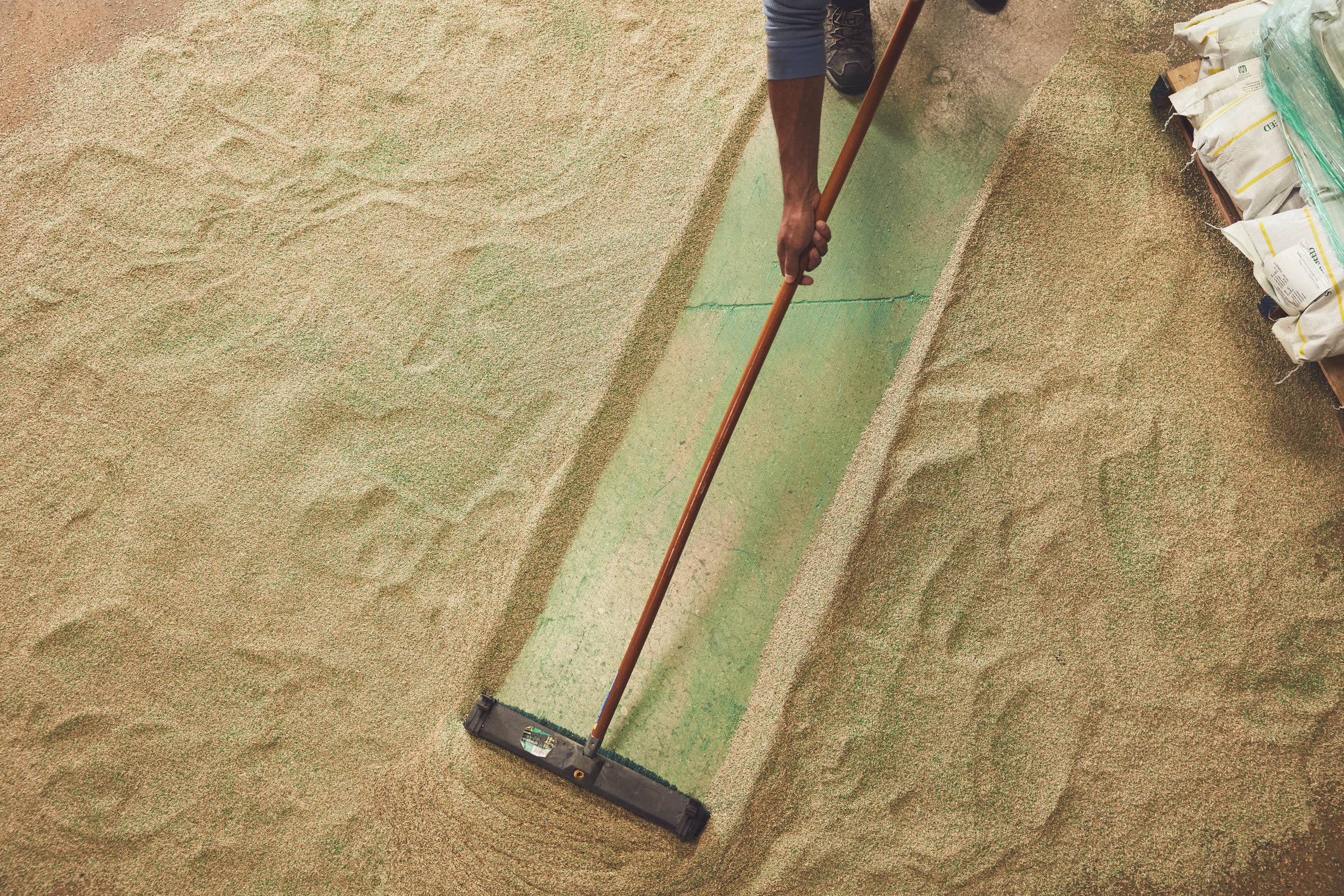 UF_Seed_Sweeping-0065.jpg