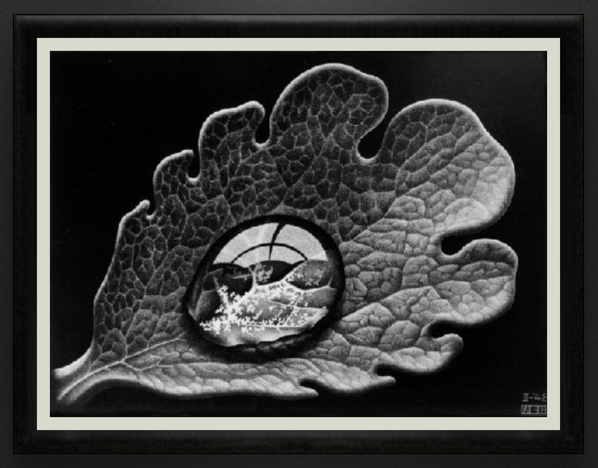 Dewdrop, 1948, Mezzotint. 245mm x 179mm.