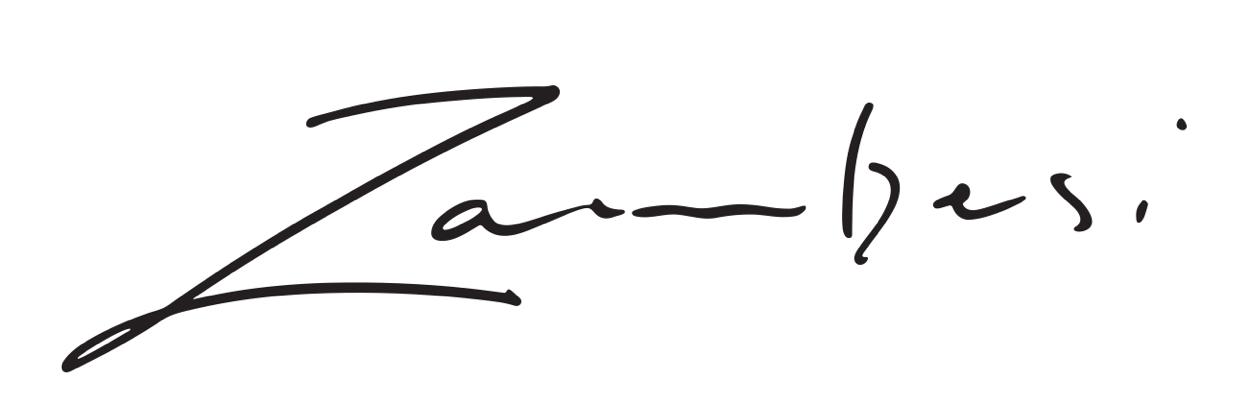 Zambesi Logo.png
