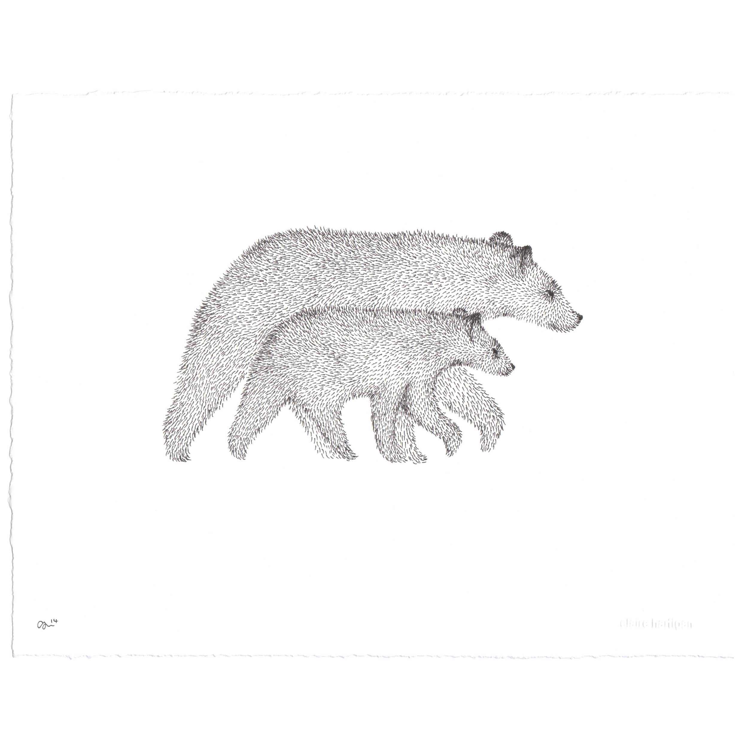 Claire Hartigan Original Drawing 'Bear and Cub'.jpg