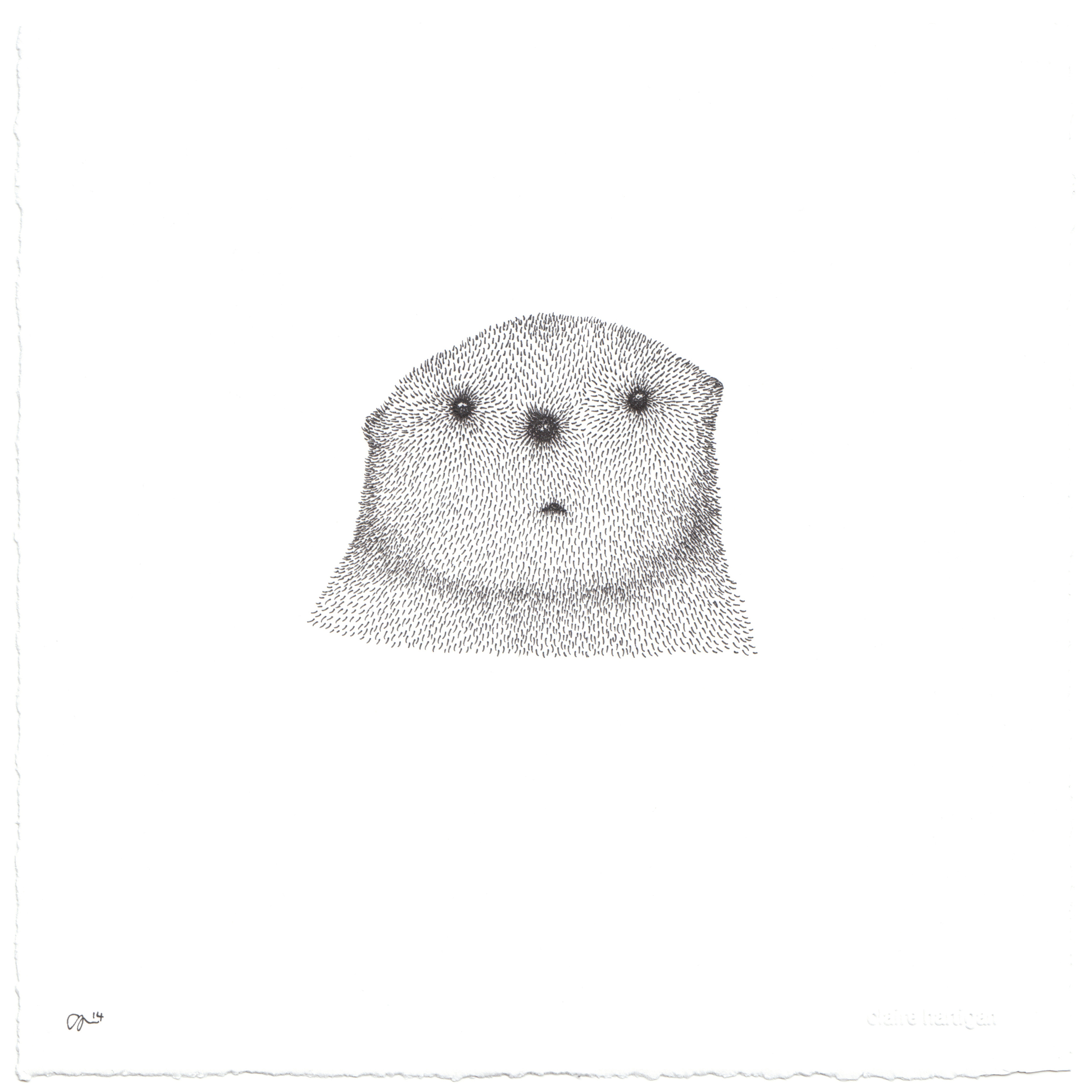 Claire Hartigan Original Drawing 'Curious Otter'.jpg