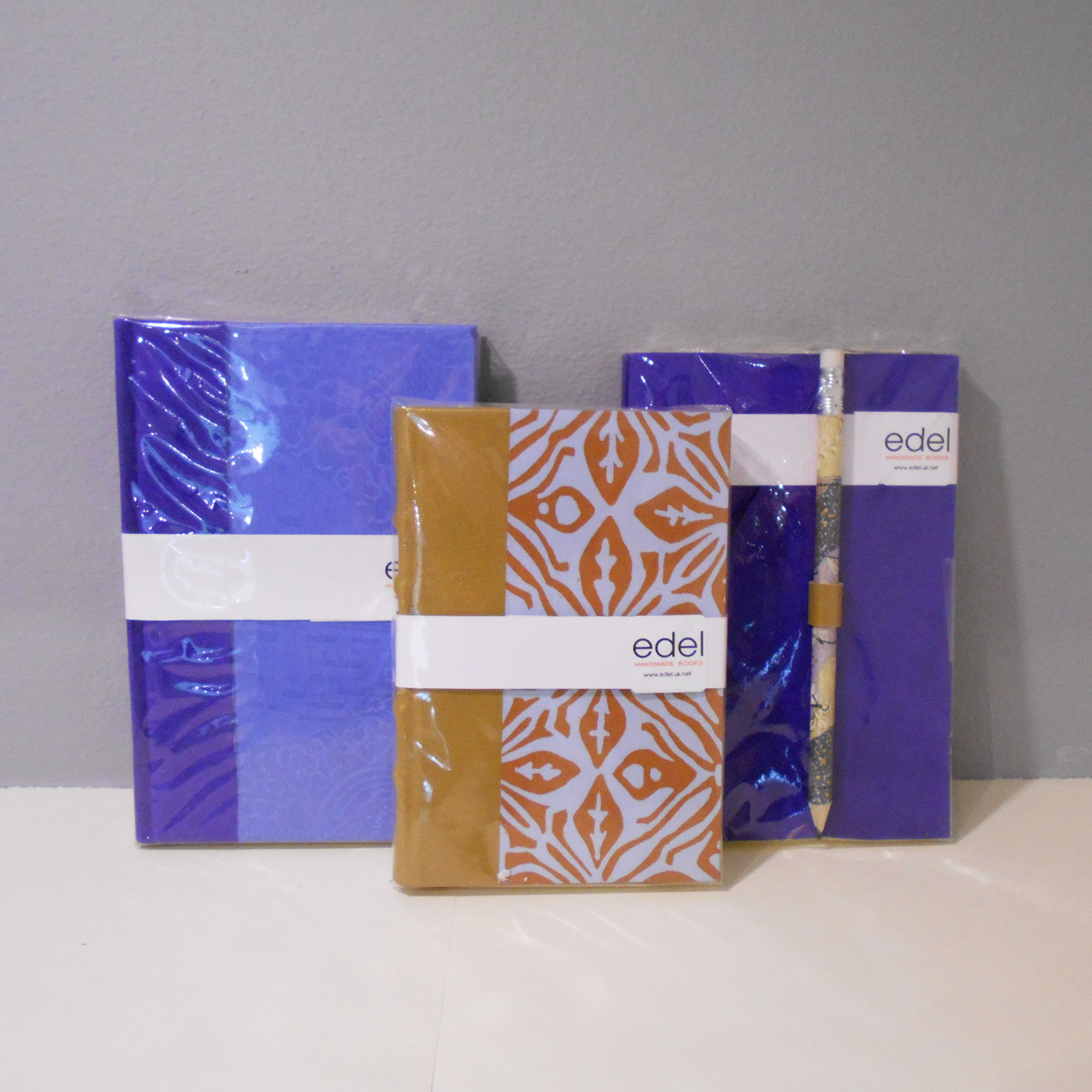 Edel Hopkin   Handmade Books  paper and leather  £25 each