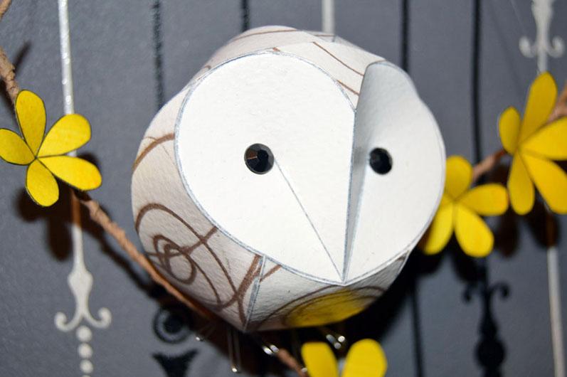 Virgil the Baby Barn Owl