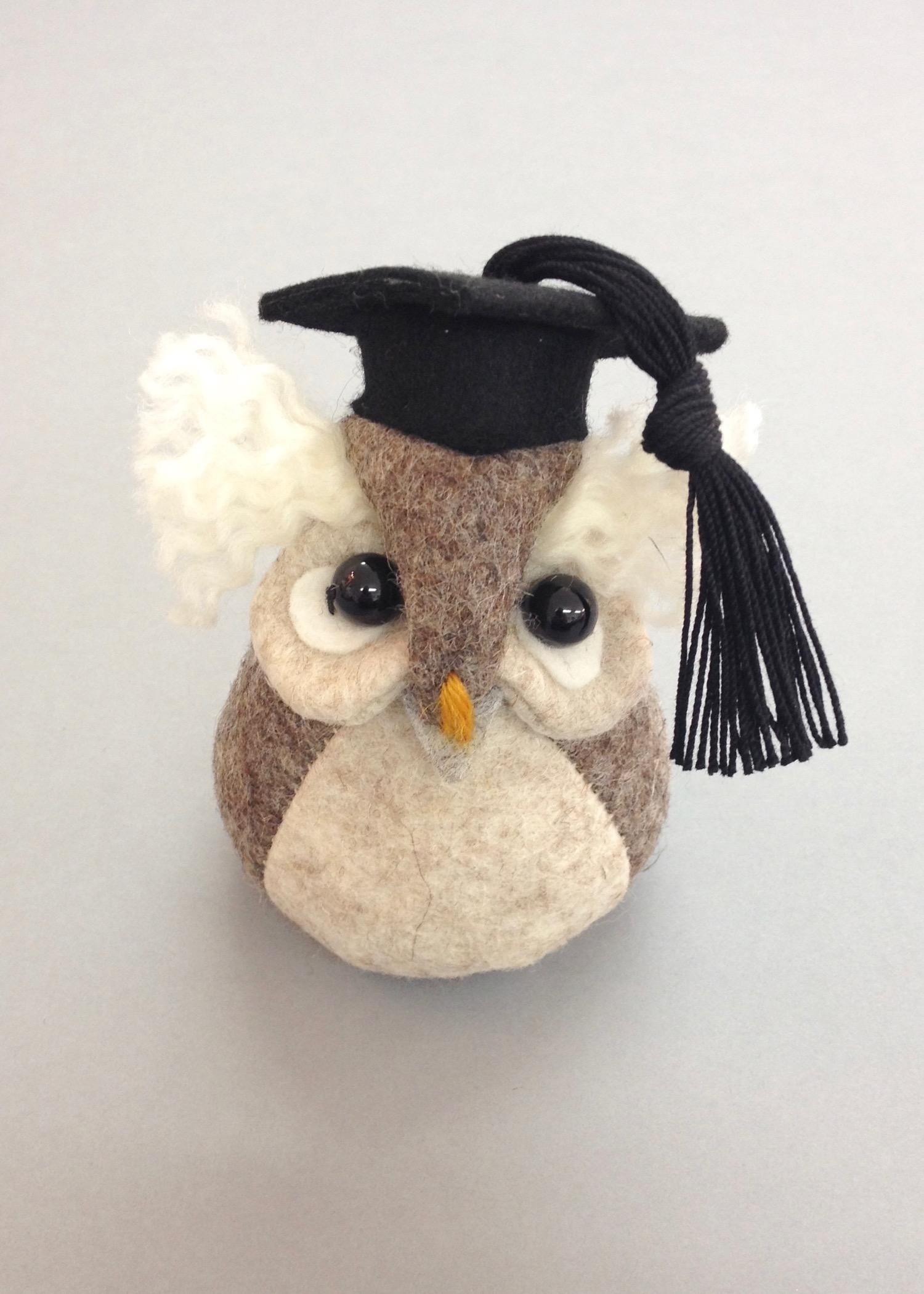 Ollie the Graduation Owl  felt