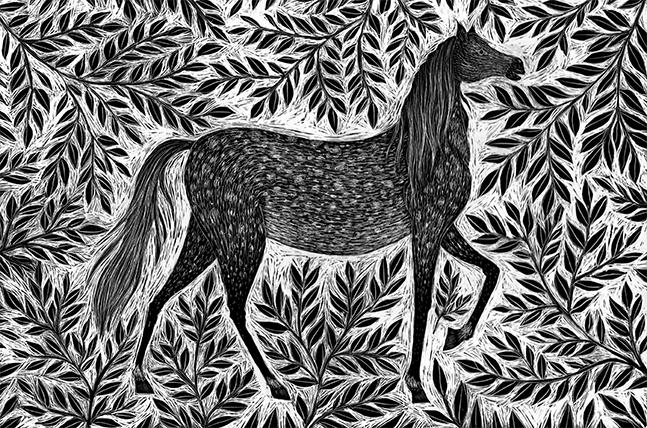 Dapple Grey Horse  scraperboard