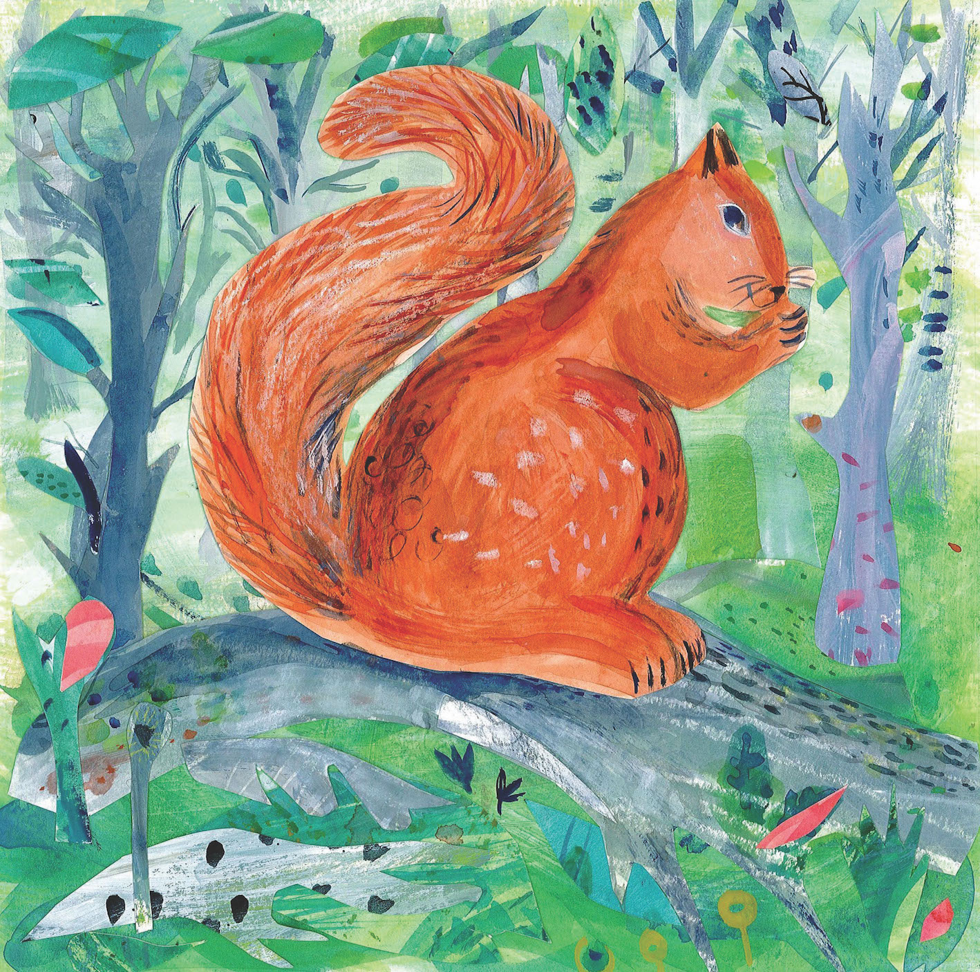 Red Squirrel  mixed media  30 x 30cm  £180 framed