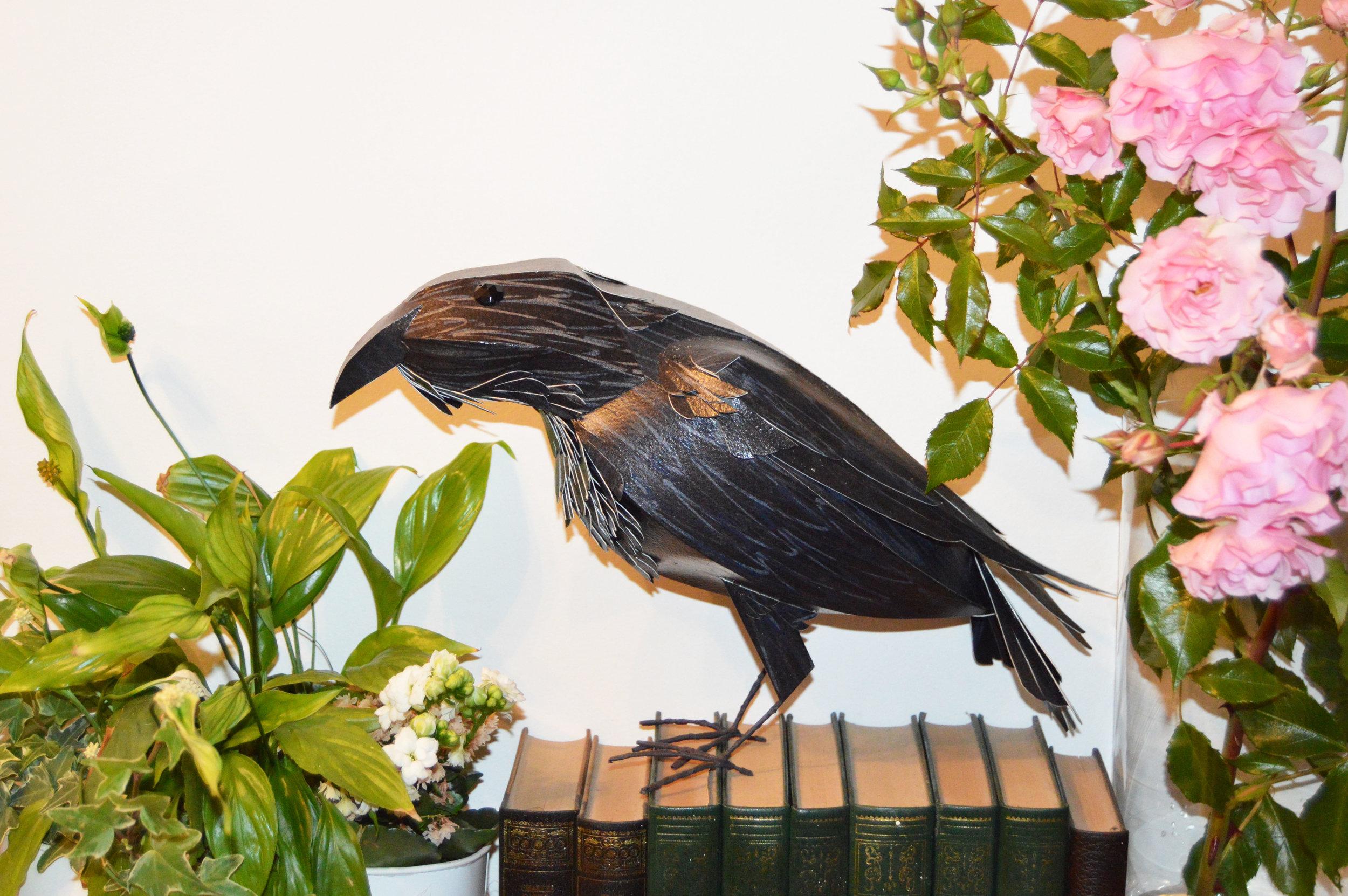 Edgar the Raven