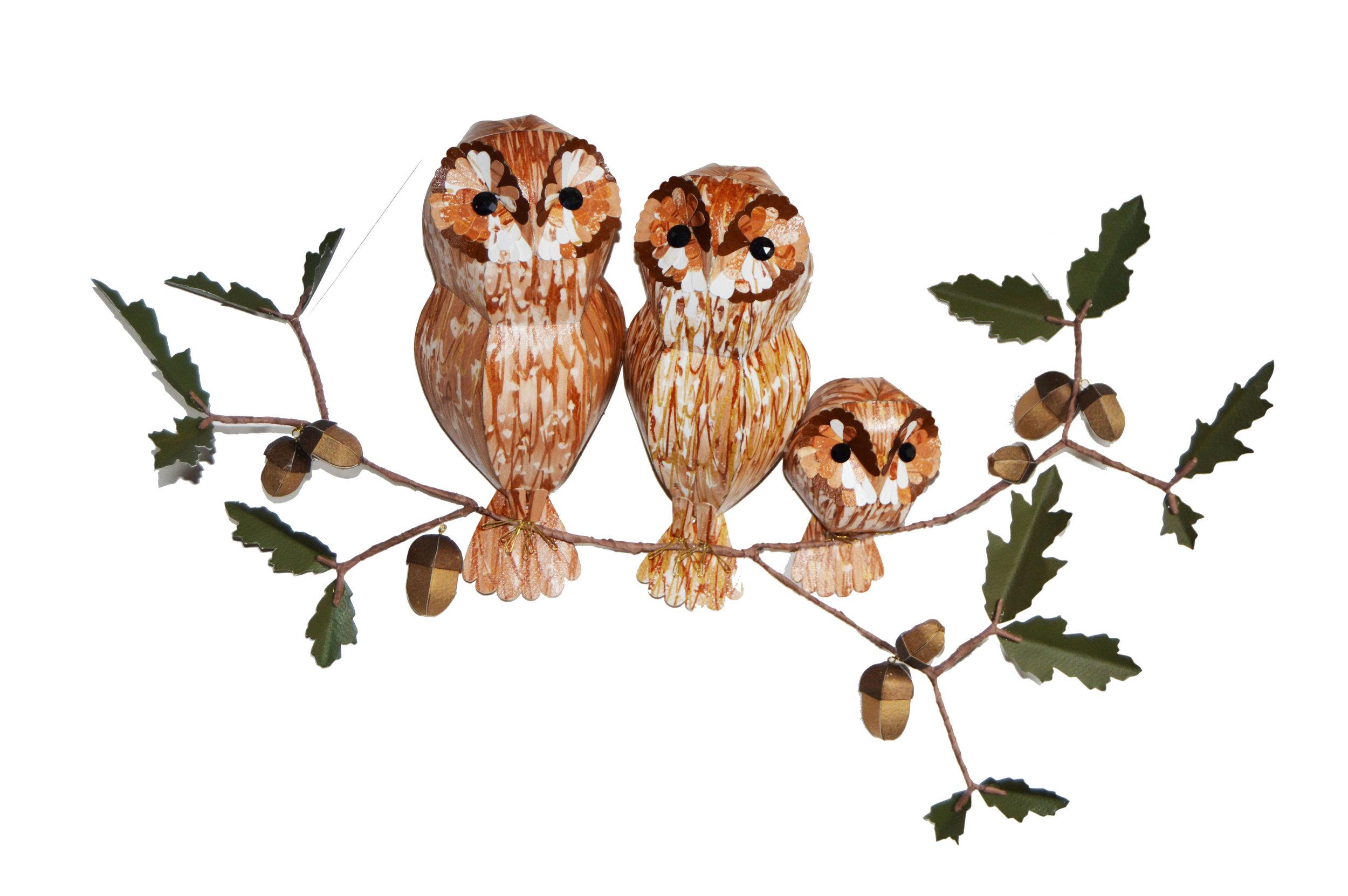 Tawny Owl Parliament