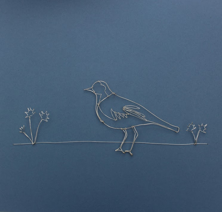 Pied Wagtail  £164