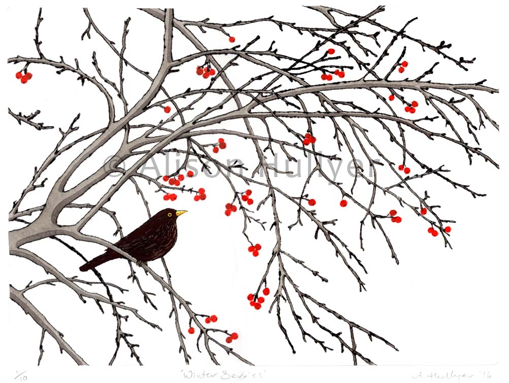 Winter Berries  drypoint & relief print  31 x 23cm  £195 unframed  £245 framed