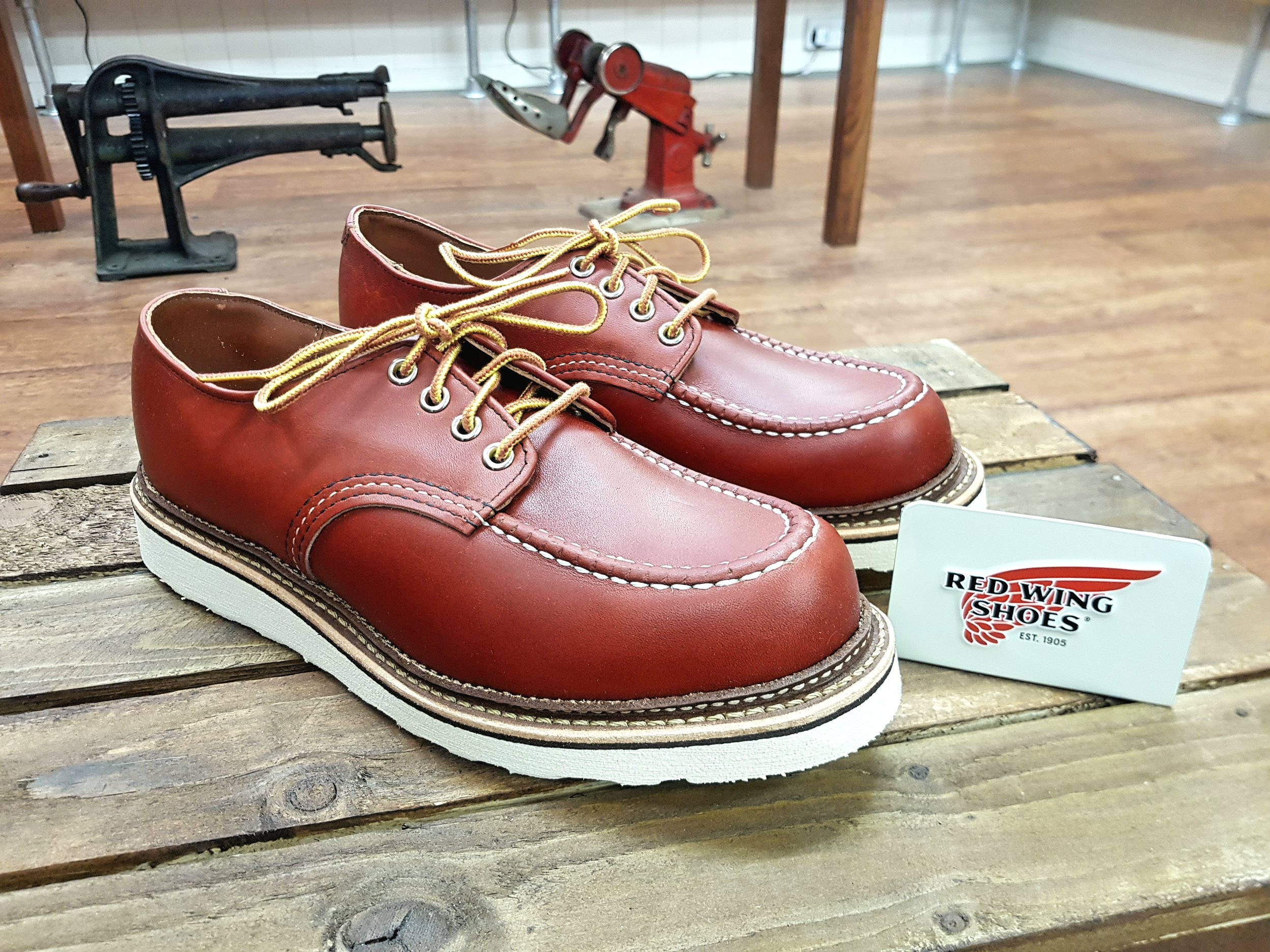 RED WING: Classic Moc Toe 8109 Oxford
