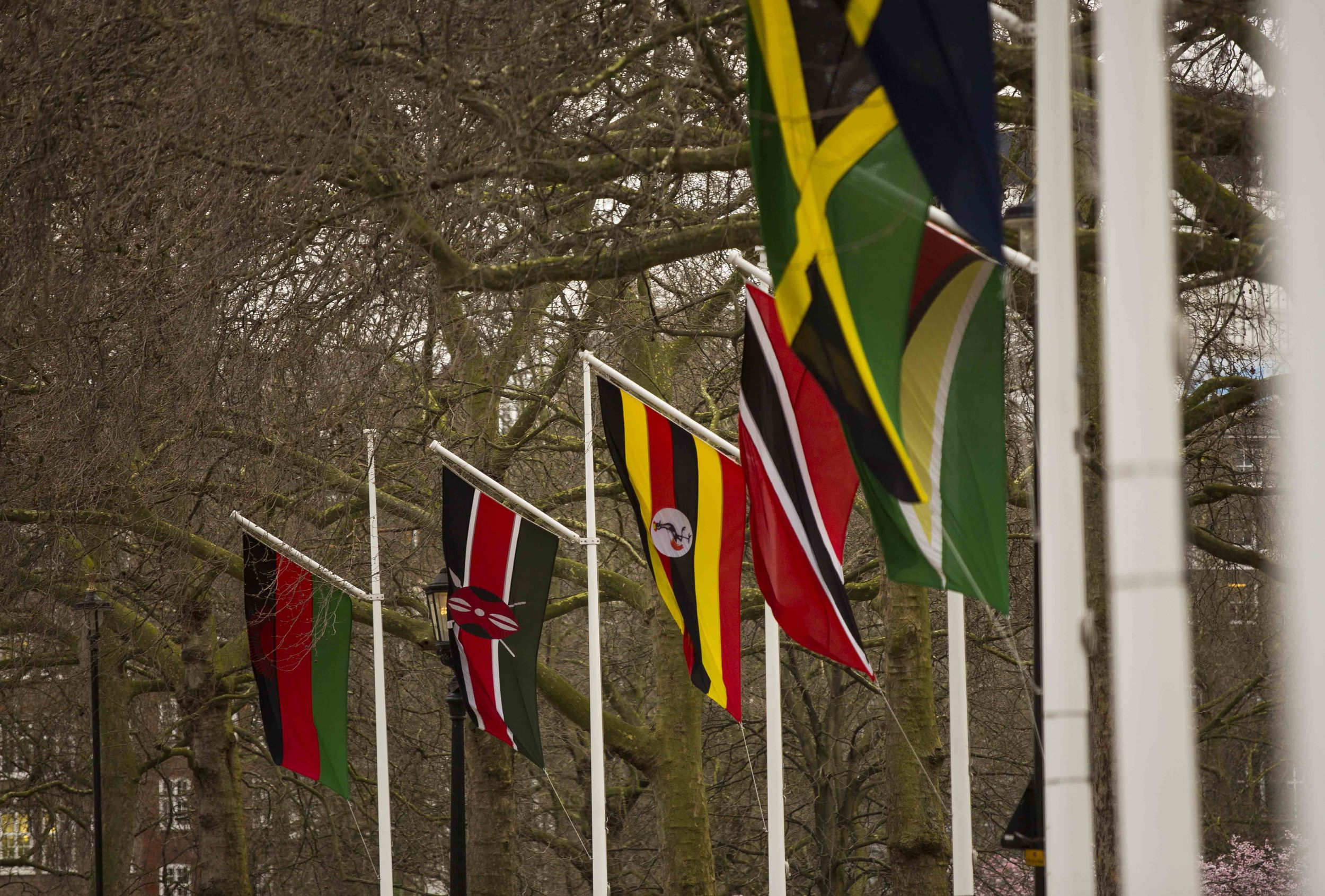 Commonwealth flags-7318.jpg