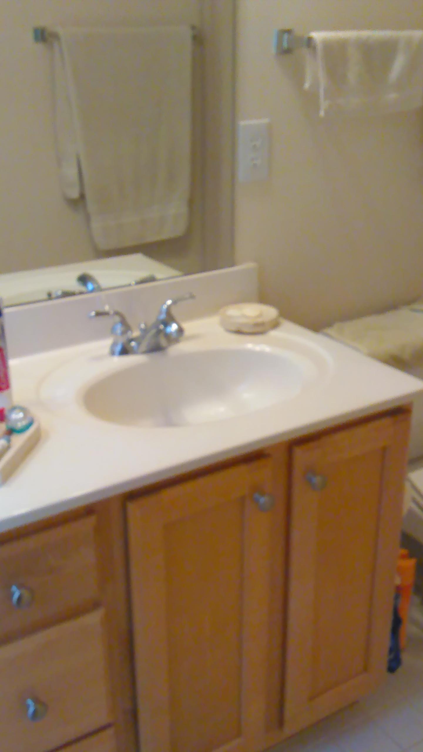 Copperline Drive, 527 - Bathroom.jpg