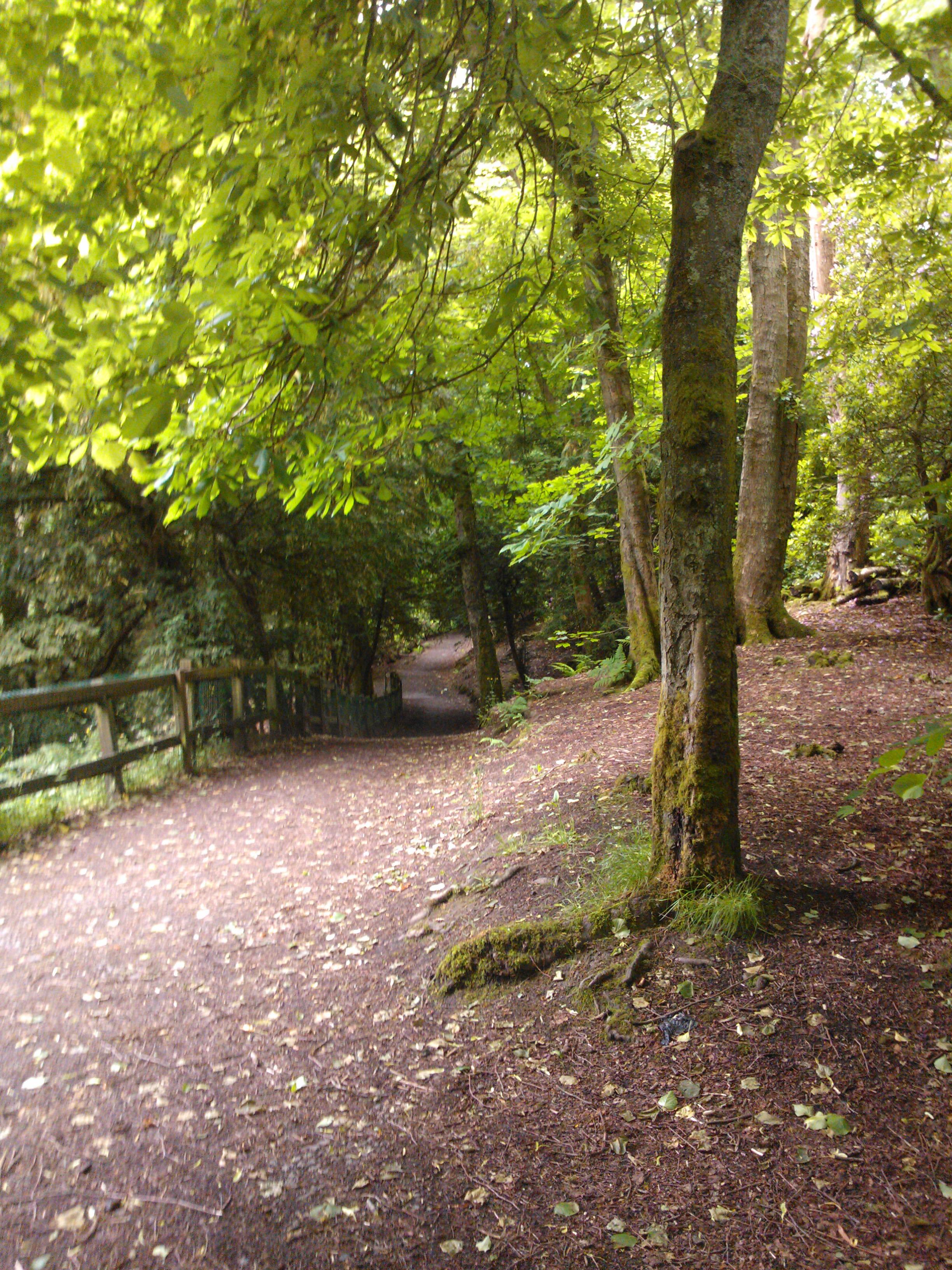 Rouken Glen path